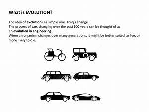 Evolution for kids