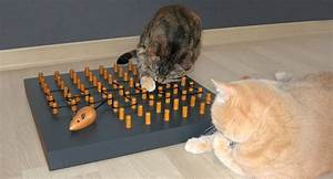 Katzenspielzeug Selber Machen Karton : ein fummelbrett f r katzen k nnen sie einfach selber bauen die passende katzenfummelbrett ~ Frokenaadalensverden.com Haus und Dekorationen