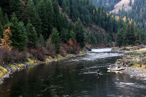 Grande Ronde River   Steelhead   Emerald Water Anglers
