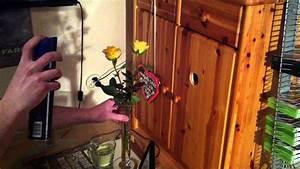 Hortensien Haltbar Machen : rosen haltbar machen mit haarspray blumen haltbar machen so geht 39 s youtube ~ A.2002-acura-tl-radio.info Haus und Dekorationen