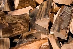 Wie Lange Muss Holz Trocknen : wie lange muss holz trocknen so gelingt gutes kaminholz ~ Watch28wear.com Haus und Dekorationen