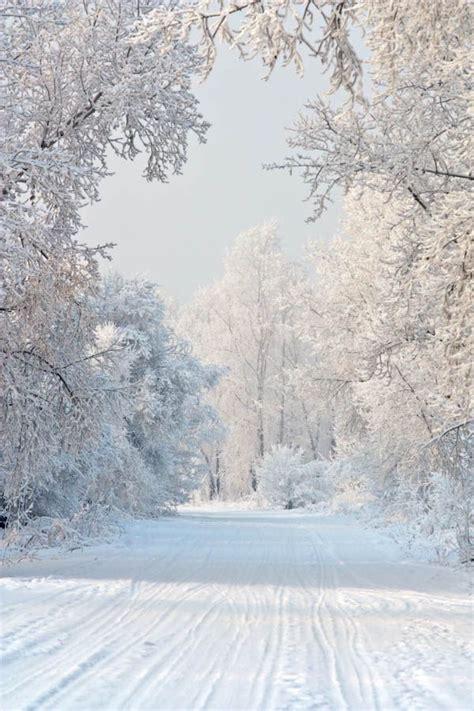 Die Besten 25+ Winter Ideen Auf Pinterest  Schnee, Winterzeit Und Winterlicht