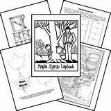 Maple Syrup Activities Tree Sugaring Worksheets Coloring Lapbook Map Children Study Sugar Printables Skills Science Lessons Pioneer Seasons Kindergarten Bush sketch template