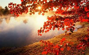 Download Awesome Autumn Wallpaper 1280x800