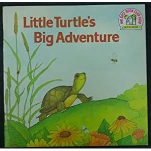 There was a little turtle. Mrs. T's First Grade Class: The Little Turtle