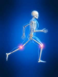 Sciatica Back Pain  Disc Problems  Neck Pain  Shoulder Pain  Sports Injury Whiplash Injury Back