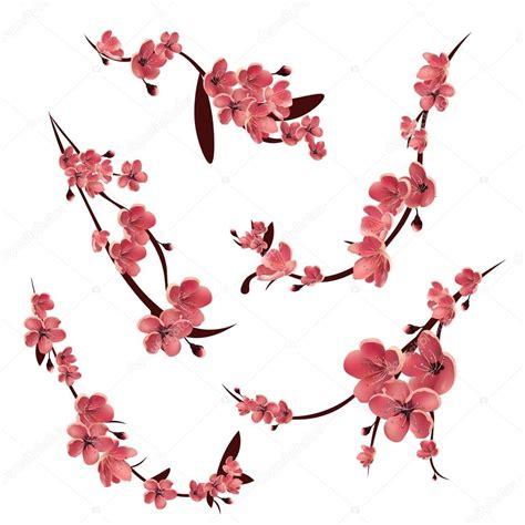 Vector: arbol de cerezo japones Ramas de sakura flor
