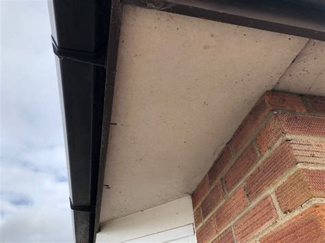 soffit replacement  norwich specialist anglia roofline