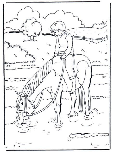 en el agua caballos