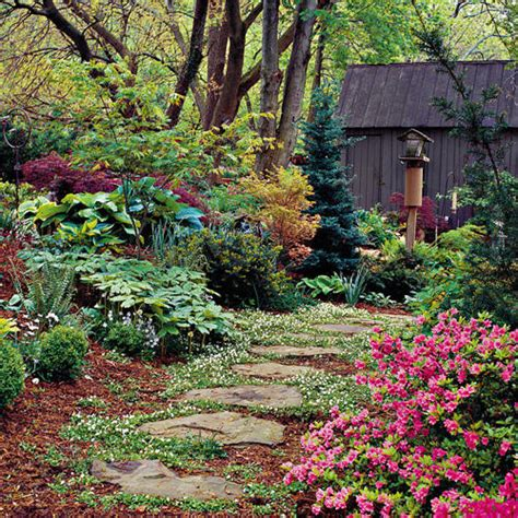 shady cottage garden 1000 images about shade garden on pinterest heuchera shade garden and shade plants