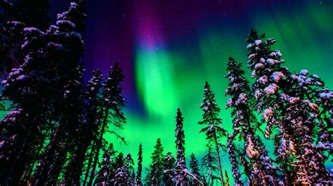 best time to see the northern lights when is the best time to see northern lights and where to