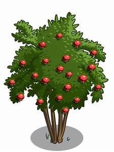 Tree Icons - FarmVille Wiki - Seeds, Trees, Animals ...
