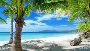 Inspirational Tropical Beach Wallpaper 4k