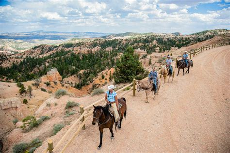 bryce canyon horseback riding adventures rides national park amerikaplus inn lodging site paardrijden