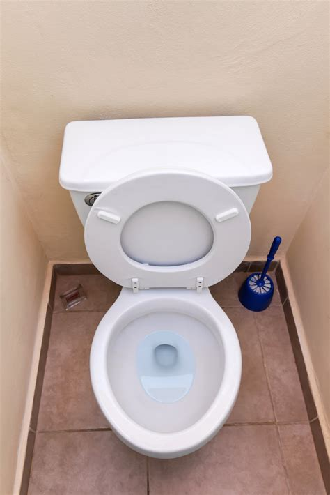 in this toilet what kind of toilet bowl should you go for