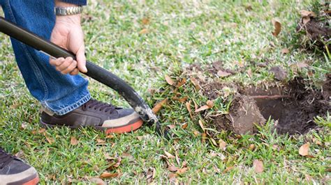 Most homeowners insurance companies allow you to easily file a claim online or over the phone. 811: The Number To Call Before Digging   Whitley-Reavis ...