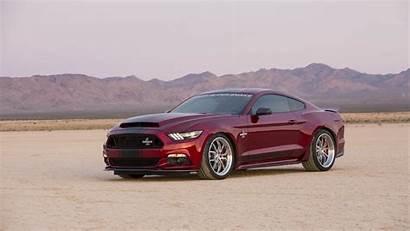 Shelby Mustang Ford Side Classic Snake Muscle