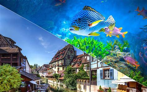 aquarium d ottrott les naades escapade les na 239 ades