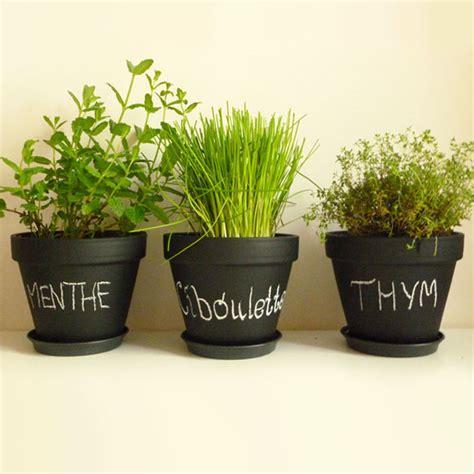 planter des herbes aromatiques en pot herbes aromatiques pot design de maison