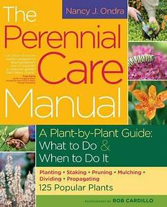The Perennial Care Manual   A Plant