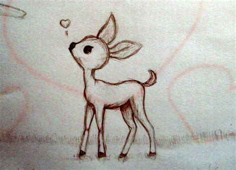 drawn buck cute pencil   color drawn buck cute