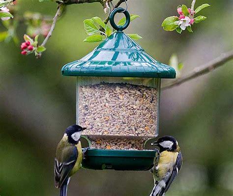 types of bird feeders british bird lovers