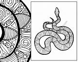 Snake Coloring Animal Zentangle Sheet Pdf Colouring Adult Sketch Intricate sketch template