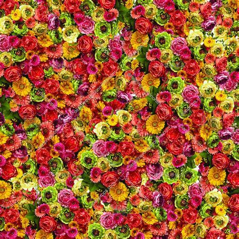 Colorful Flowers Galore Backdrop   Design Revolution