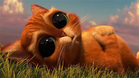 puss in boots eye cute thing youtube