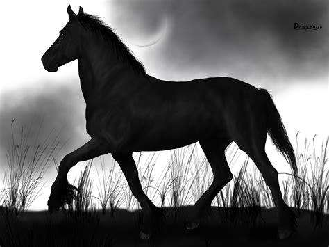 Tornado-zorro's Horse By 1dragonisa1 On Deviantart