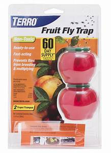 TERRO® Fruit Fly Trap Looks Like an Apple!