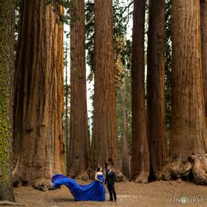 new wedding venues sequoia national park maternity photography yvette justin