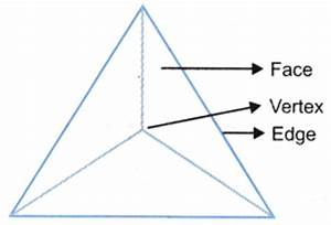 What are the Different Types Of 3-D Shapes - A Plus Topper