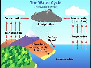 Science  U2013 The Water Cycle