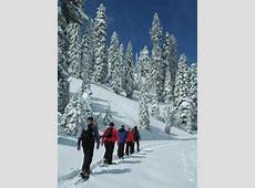 Rangerled Programs Lassen Volcanic National Park US