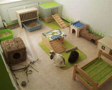 rabbitat heavenideas    rabbits living space