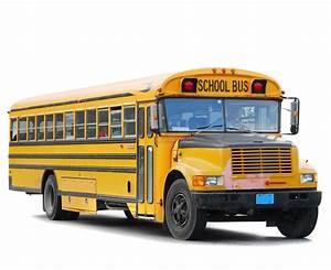 schoolbus - The Observation Deck