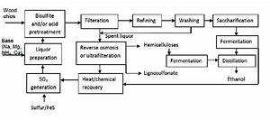 Production Of Biofuels From Cellulose Of Woody Biomass