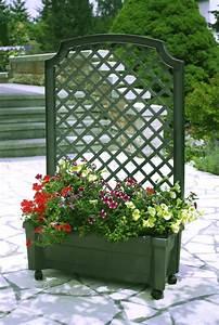 Jardiniere Avec Treillis Carrefour : jardini re treillis sur roulettes port offert jardini re ~ Dailycaller-alerts.com Idées de Décoration