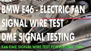 E46 Electric Fan Wiring Diagram