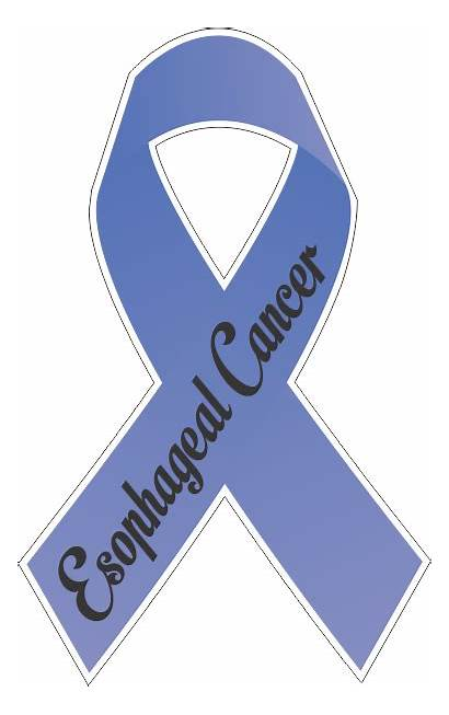 Esophageal Cancer Ribbon Decal Ribbons Decals Printed