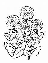 Coloring Bouquet Flowers Flower Fleur Fleurs Colouring Roses Colorier Des Sheets Imprimer Pour Spray Hugolescargot Enregistrée Depuis sketch template