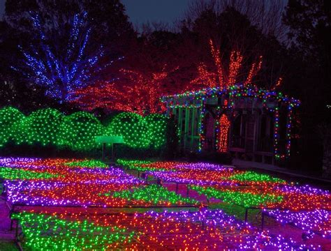winter lights at the nc arboretum in asheville christmas
