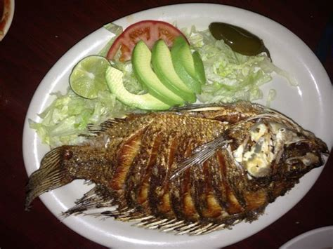 el patio mexican restaurant 4765 highway 17 byp s in myrtle sc tips and photos on