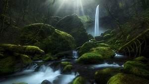 waterfall greenery moss oregon hd nature wallpapers