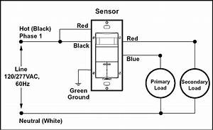 Mbacok Blog  Occupancy Sensor Wiring Diagram