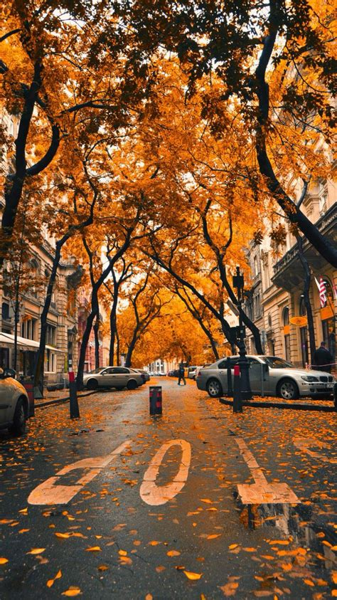 Aesthetic Fall Backgrounds Iphone by Fall Iphone Wallpaper Wallpapers Fall Wallpaper