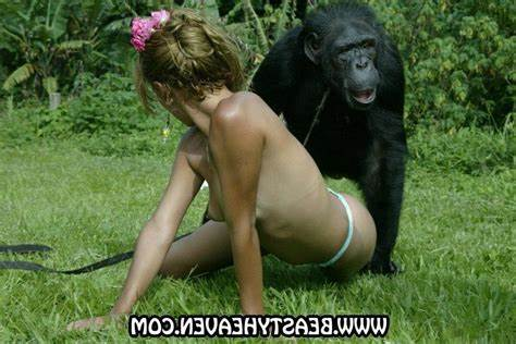 Monkey Dicked With Brasilian Baby Showing Porn Images For Animal With Dolly Monkey