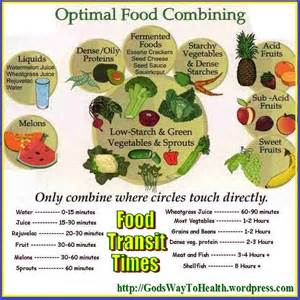 Food Combination Chart Digestion