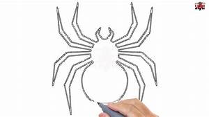 How to Draw a Spider Easy Step By Step Drawing Tutorials ...
